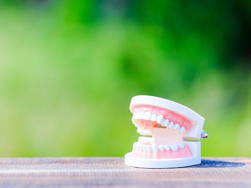 歯の寿命を伸ばすための<br>取り組み